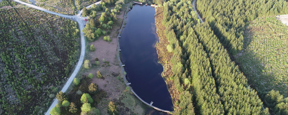 Aerial photography of forest and lake area